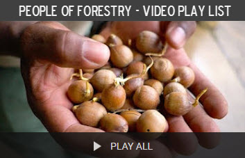 People of Forestry - Video Series Play List