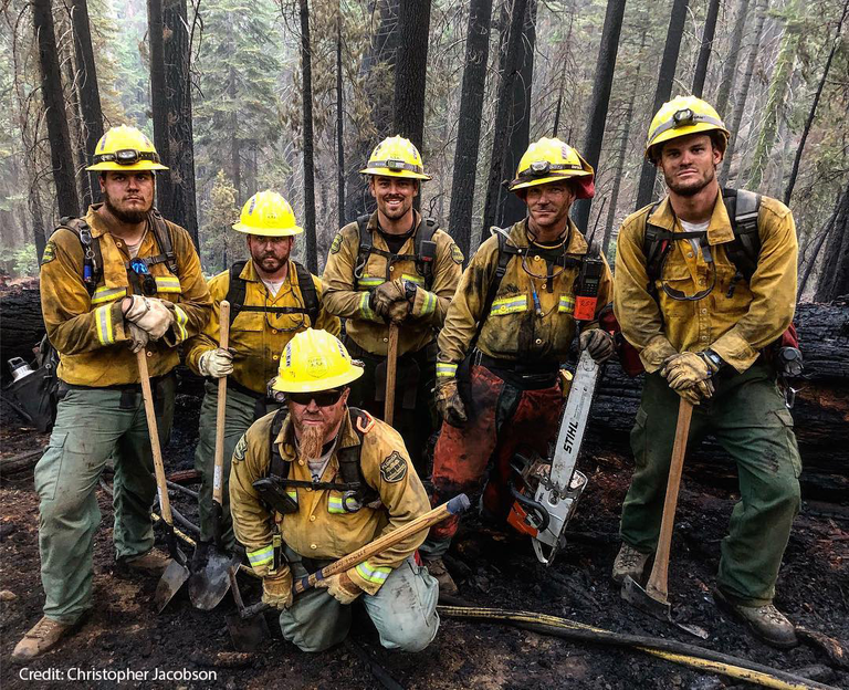 group of wildland firefighters