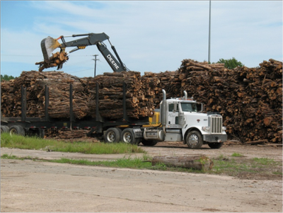 Forest Products, Services and You — Southern Group of State